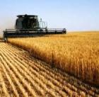 """25 ноября семинар  """"Эффективное управление сельскохозяйственным предприятием"""""""